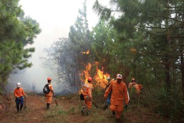 Temporada de incendios forestales en Barrancabermeja