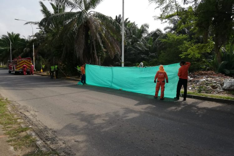 Jornada de Limpieza y Embellecimiento en Zonas Verdes del barrio Villaluz